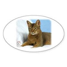 Abyssinian Cat 9Y009D-020 Decal