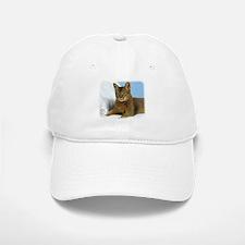 Abyssinian Cat 9Y009D-020 Baseball Baseball Cap