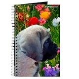 English mastiff Journals & Spiral Notebooks