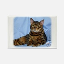 Bengal Cat 9W052D-018 Rectangle Magnet