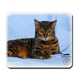 Bengal cats Mouse Pads