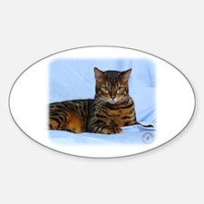 Bengal Cat 9W052D-023 Decal