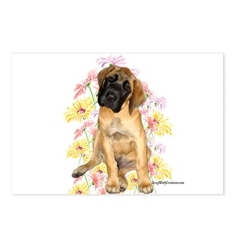 Mastiff 87 Postcards (Package of 8)