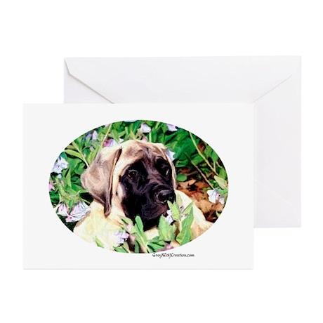 Mastiff 76 Greeting Cards (Pk of 10)