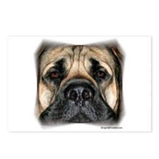 Mastiff 2 Postcards (Package of 8)