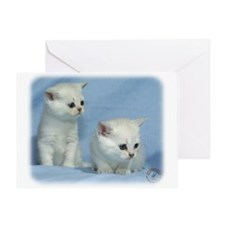 Kittens 9W054D-267 Greeting Card