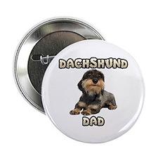 Wirehaired Dachshund Dad 2.25