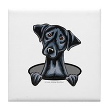 Black Lab Hole Tile Coaster