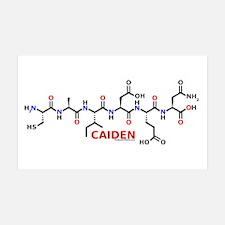 Caiden molecularshirts.com 38.5 x 24.5 Wall Peel