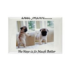 The Pugs Make the Rules Rectangle Magnet (100 pack