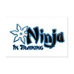 Training Ninja Mini Poster Print