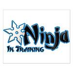 Training Ninja Small Poster