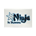 Training Ninja Rectangle Magnet (10 pack)