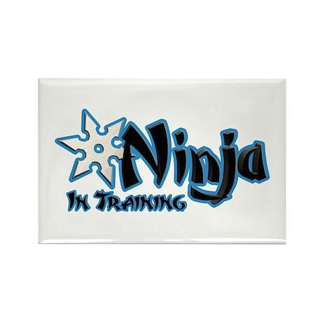 Training Ninja Rectangle Magnet (100 pack)