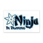 Training Ninja 22x14 Wall Peel