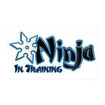 Training Ninja 38.5 x 24.5 Wall Peel