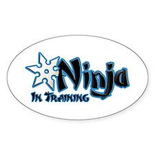 Training Ninja Decal