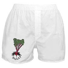 Beetnik Boxer Shorts