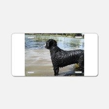 Portuguese Water Dog Aluminum License Plate