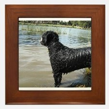 Portuguese Water Dog Framed Tile