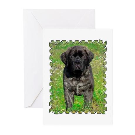Mastiff 129 Greeting Cards (Pk of 10)