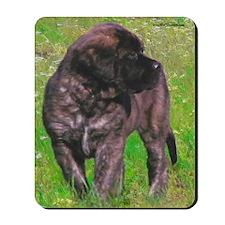 Mastiff 151 Mousepad