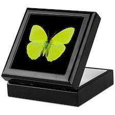 Phoebis sennae Butterfly Keepsake Box