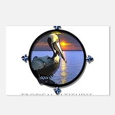Cute Pelican Postcards (Package of 8)