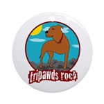 Tripawds Rock (Trouble) Ornament (Round)