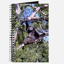 Female Gibbon In A Tree Journal