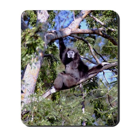 Female Gibbon In A Tree Mousepad