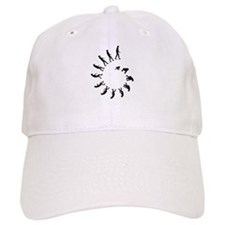Evolution Spiral Baseball Cap