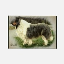 Blue Merle Collie Rectangle Magnet (10 pack)