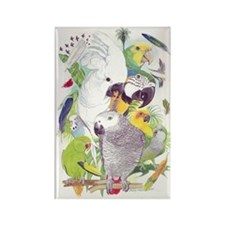 Parrot Fun Rectangle Magnet (10 pack)