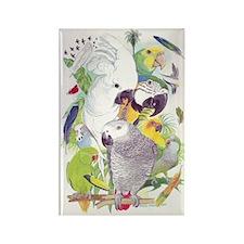 Parrot Fun Rectangle Magnet (10 pack)