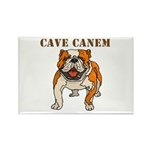 Cave Canem (Bulldog) Rectangle Magnet (100 pack)