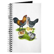 Ameraucana Chicken Family Journal