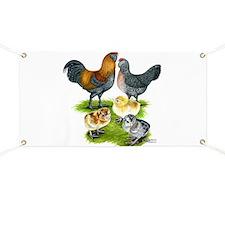 Ameraucana Chicken Family Banner