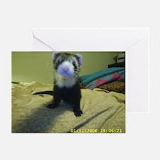 Ferrets 'R Fun Greeting Cards (Pk of 10)
