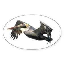 Pelican Flying Decal