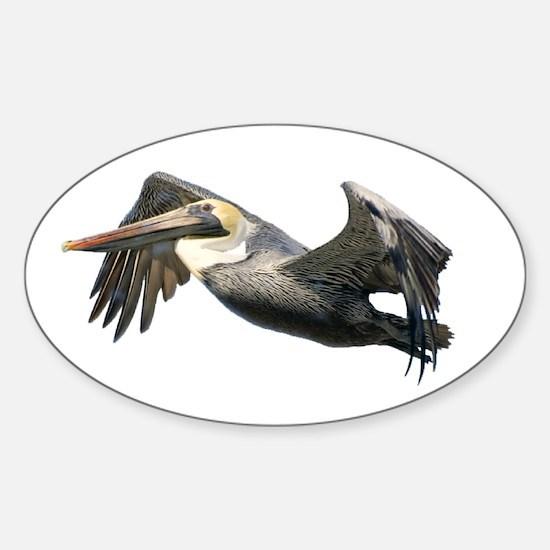 Pelican Flying Sticker (Oval)