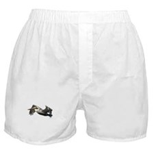 Pelican Flying Boxer Shorts