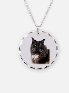 Maine Coon Cat 9Y825D-036 Necklace