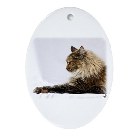 Maine Coon Cat 9Y825D-103 Ornament (Oval)