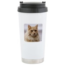 Maine Coon Cat 9Y825D-145 Travel Mug