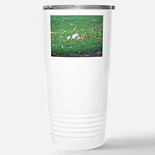Cute White squirrel Travel Mug