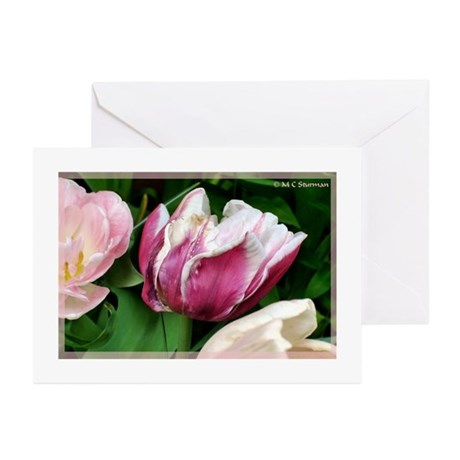 Tulips, colorful, photo Greeting Cards (Pk of 20)
