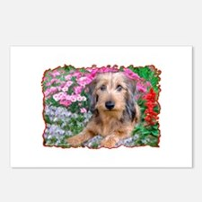 Doxie 1 Postcards (Package of 8)