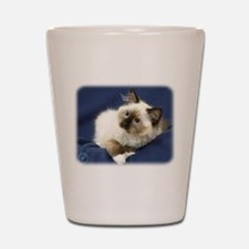 Ragdoll Cat 9W082D-011 Shot Glass
