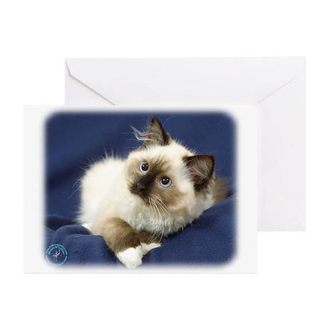 Ragdoll Cat 9W082D-011 Greeting Cards (Pk of 20)